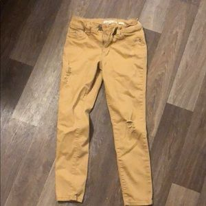 Distressed Mustard YMI HIGHRISE pants